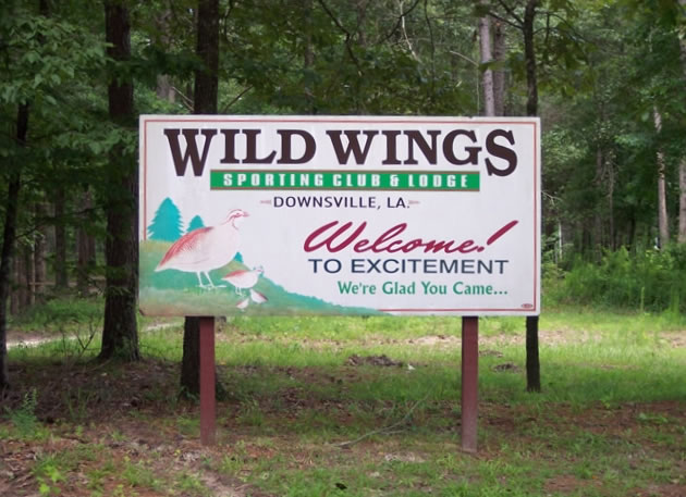 The Wild Wings Sign